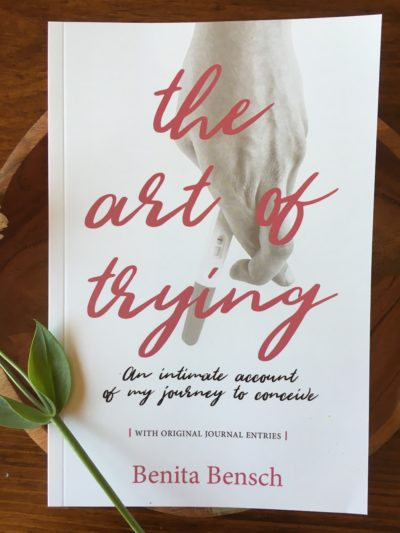 The Art of Trying by Benita Bensch - front cover